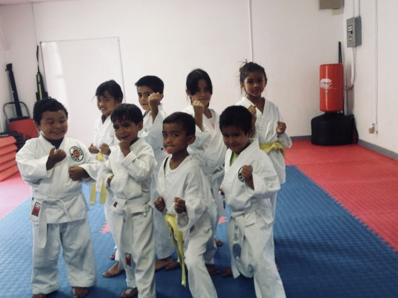 Beginners karate picture
